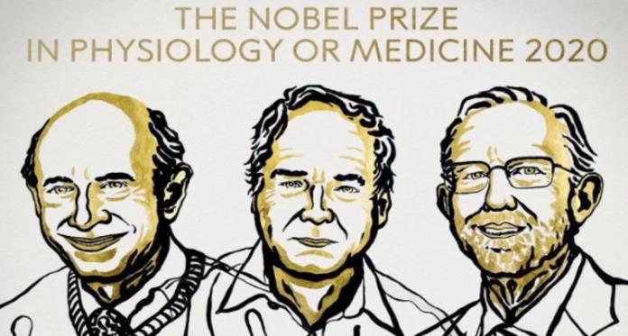 Nobel Prize 2020